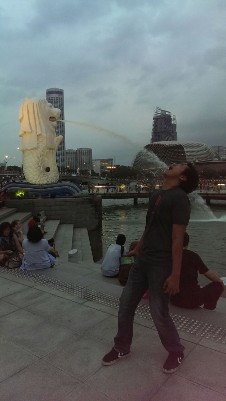 sani-with-merlion