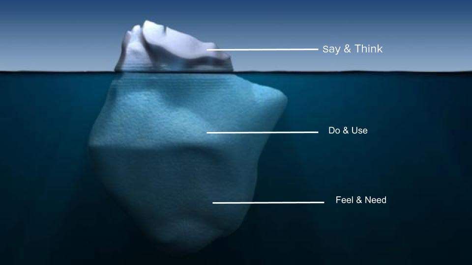 A survey is like trying to understand the depth of an iceberg from the surface